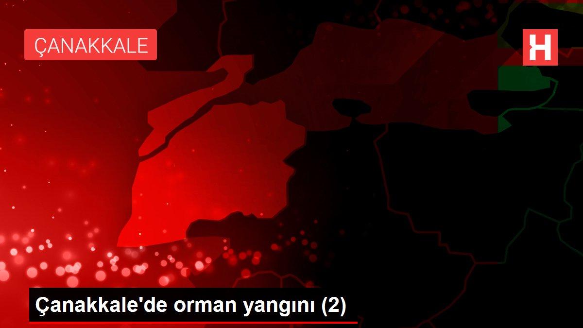 Son dakika haberleri: Çanakkale'de orman yangını (2)