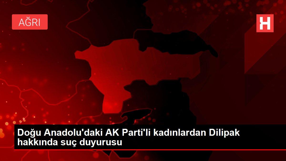 Doğu Anadolu'daki AK Parti'li kadınlardan Dilipak hakkında suç duyurusu