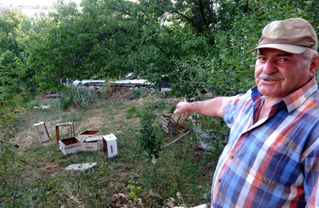 Köye inen ayılar 2 bin liralık bal yedi! O anlar kameralara yansıdı