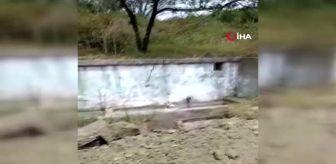 Malkara: O anları kaydeden vatandaş isyan etti: 150 yıllık tarihi çeşmede define aradılar