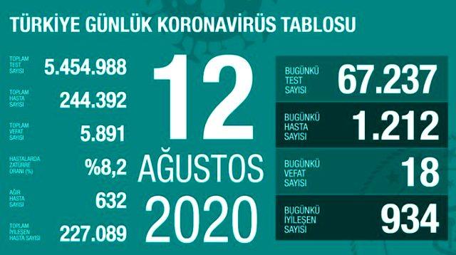 Son Dakika: Türkiye'de 12 Ağustos günü koronavirüs kaynaklı 18 can kaybı, 1212 yeni vaka tespit edildi