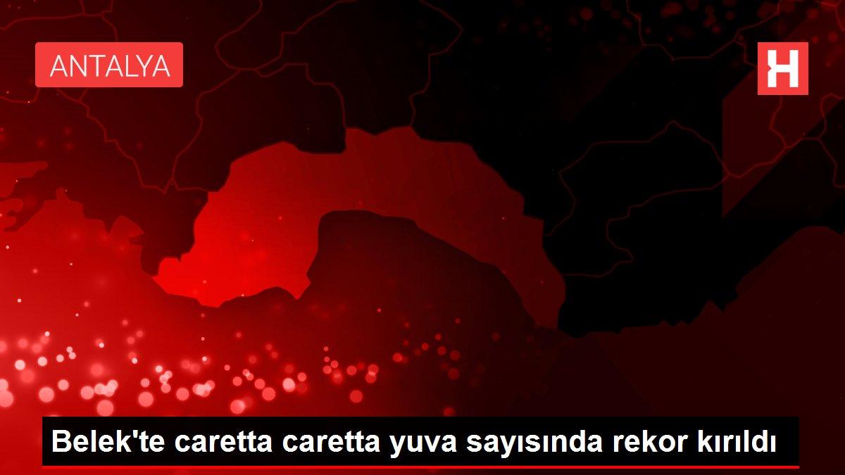 Belek'te caretta caretta yuva sayısında rekor kırıldı