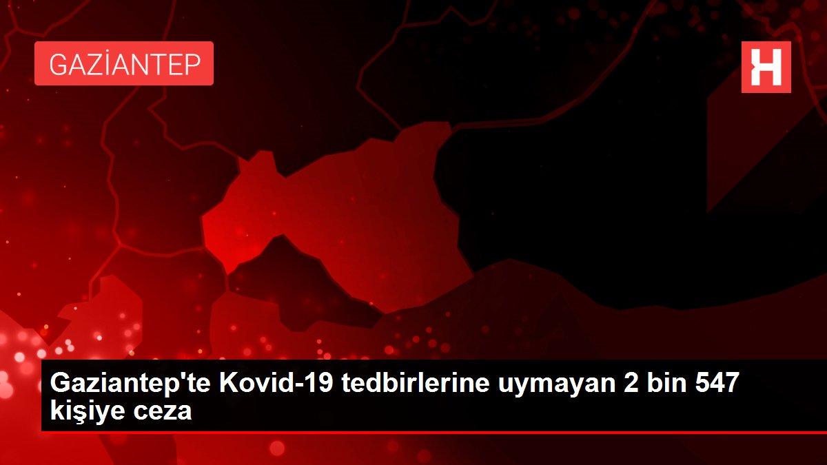 Gaziantep'te Kovid-19 tedbirlerine uymayan 2 bin 547 kişiye ceza