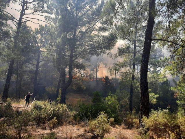 Son dakika haber | Manavgat'ta aynı saatlerde dört ayrı noktada orman yangını