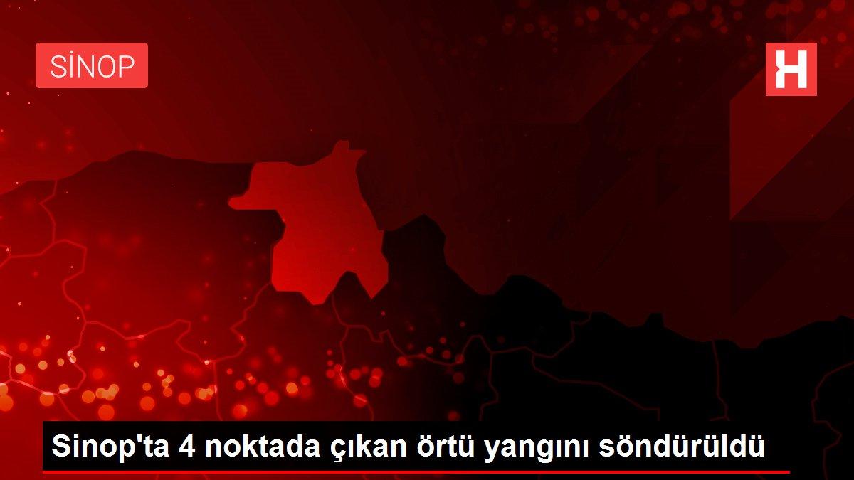 Son dakika... Sinop'ta 4 noktada çıkan örtü yangını söndürüldü