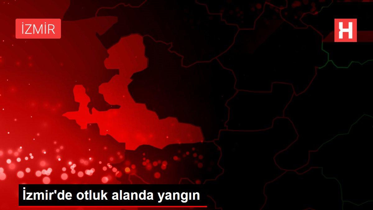 Son dakika gündem: İzmir'de otluk alanda yangın