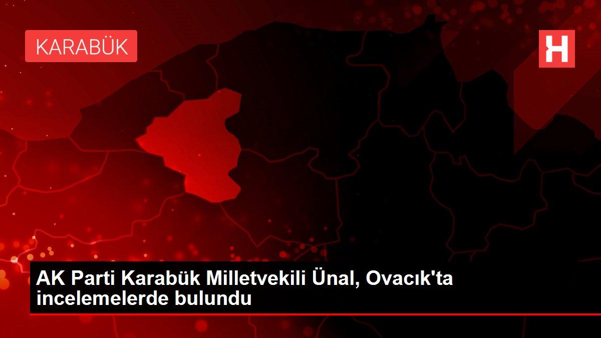 AK Parti Karabük Milletvekili Ünal, Ovacık'ta incelemelerde bulundu