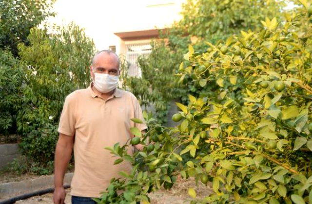 48 günlük tedaviyle koronavirüsten kurulan Türk hasta: 10 dakikalık oksijen için servetimi verirdim