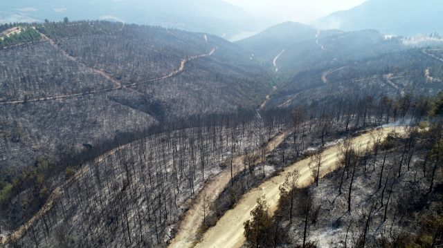 Son Dakika | Kozan'da yangına müdahale sürüyor