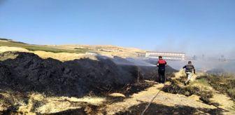 Bozova: Şanlıurfa'da tonlarca saman yandı
