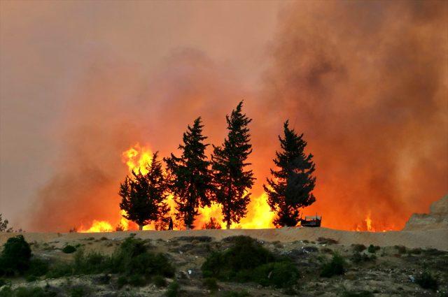 Son Dakika: Adana Kozan'da önceki gün başlayan orman yangını kontrol altına alındı