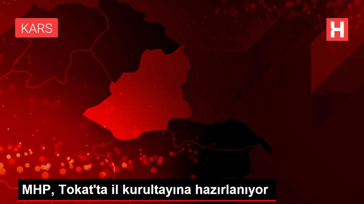 MHP, Tokat'ta il kurultayına hazırlanıyor