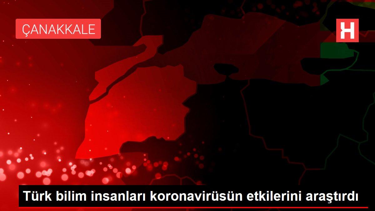 Türk bilim insanları koronavirüsün etkilerini araştırdı