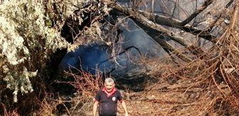 Yeşilhisar: Yeşilhisar'da çıkan yangında ağaçlar kül oldu