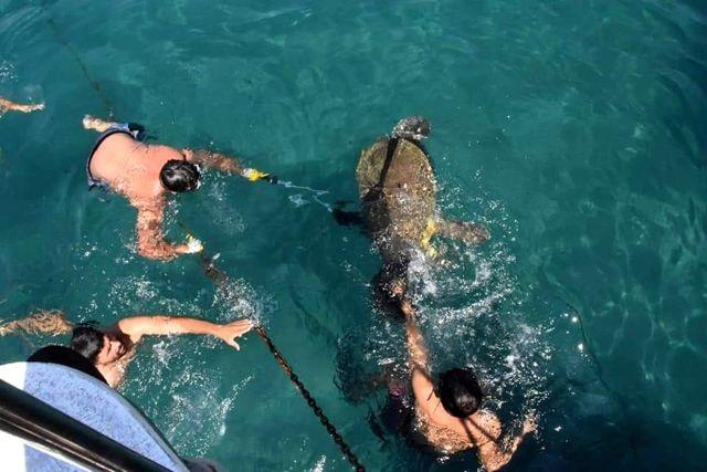Antalya'da yaralı caretta, 3 saat süren çalışmayla sudan çıkarıldı