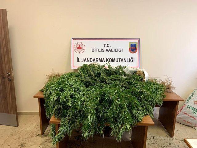 Bitlis'te 94 kilo 850 gram kubar esrar ile 237 kök kenevir ele geçirildi