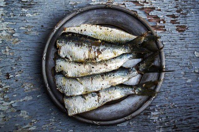 Omega 3 nedir? Omega 3 faydaları nelerdir? Omega 3 fiyatı nedir? Omega 3 çeşitleri nelerdir?Balık yağı ne işe yarar? Balık yağının faydaları nelerdir?