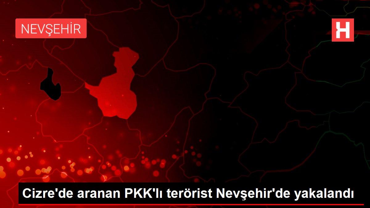 Cizre'de aranan PKK'lı terörist Nevşehir'de yakalandı
