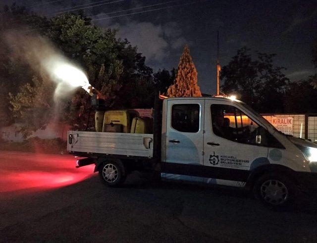 İstanbul sınırındaki 3 ilçeyi böcekler istila etti! Önlemlerde başarılı olamayan vatandaş belediyeden yardım istedi