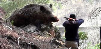 Ahmet Aktaş: Türkiye'de 2020 yılının ilk 9 ayında 9 kişi domuz sanılarak vuruldu