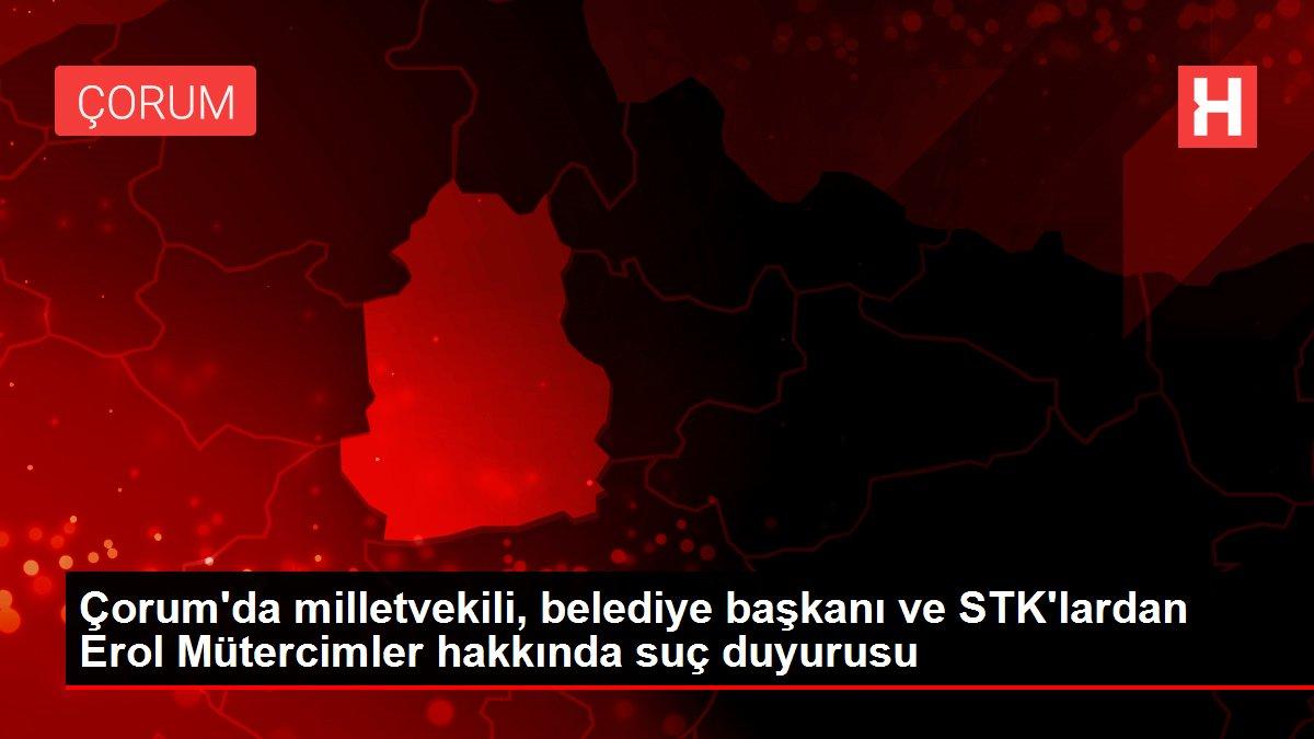 Çorum'da milletvekili, belediye başkanı ve STK'lardan Erol Mütercimler hakkında suç duyurusu
