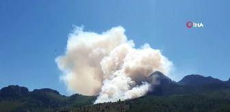 Orman İşletme Müdürlüğü: Pozantı'da orman yangını