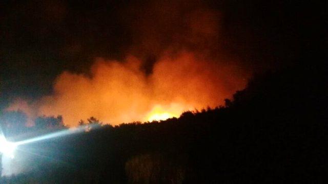 Antalya'da orman yangını çıktı! Bölgeye çok sayıda itfaiye ekibi sevk edildi