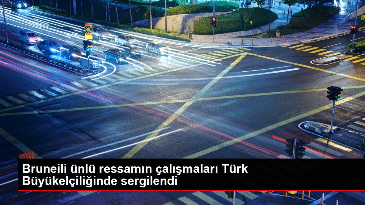 Bruneili ünlü ressamın çalışmaları Türk Büyükelçiliğinde sergilendi