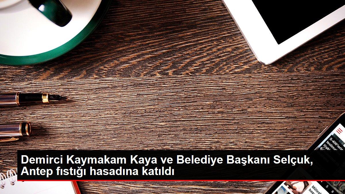 Demirci Kaymakam Kaya ve Belediye Başkanı Selçuk, Antep fıstığı hasadına katıldı