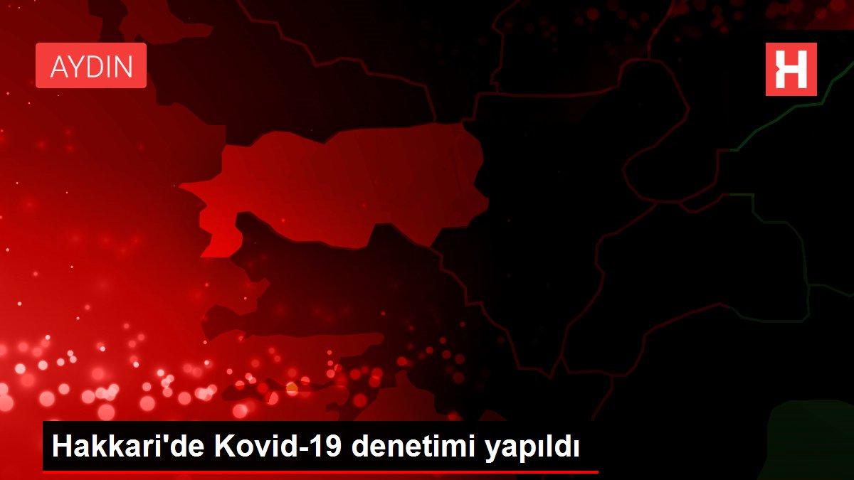 Son dakika haberi: Hakkari'de Kovid-19 denetimi yapıldı