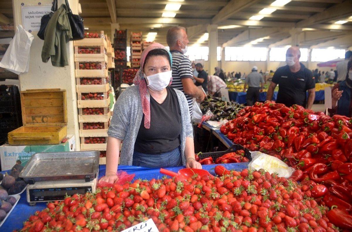 Yerli Yeniköy çileğine ilgi yoğun