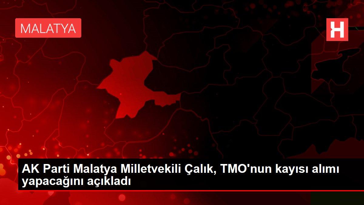 AK Parti Malatya Milletvekili Çalık, TMO'nun kayısı alımı yapacağını açıkladı