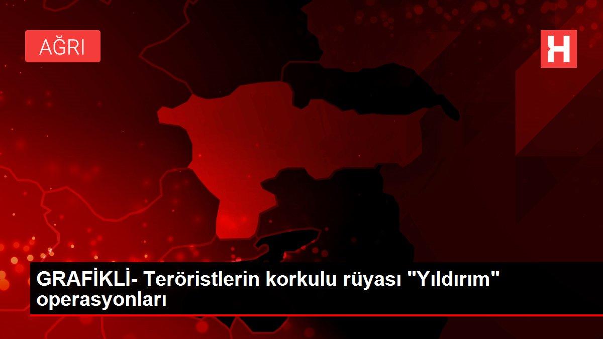 GRAFİKLİ- Teröristlerin korkulu rüyası 'Yıldırım' operasyonları