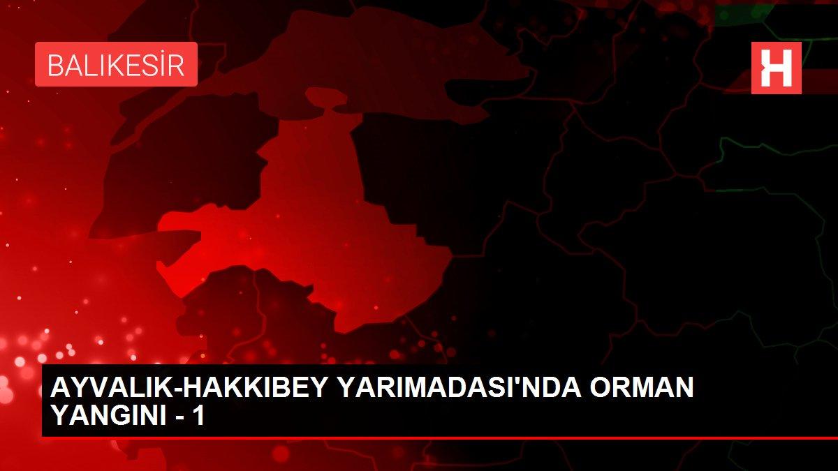 AYVALIK-HAKKIBEY YARIMADASI'NDA ORMAN YANGINI - 1