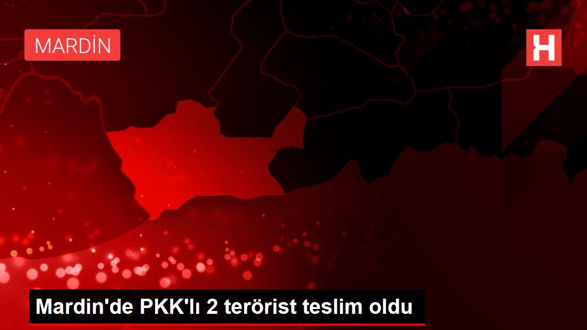 Mardin'de PKK'lı 2 terörist teslim oldu