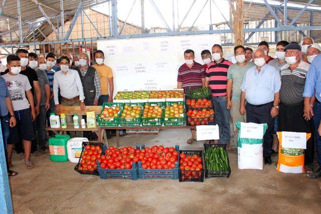 Tarlada 40 kuruşa düşen domatesin kilosu markette 5,95 liradan satılıyor
