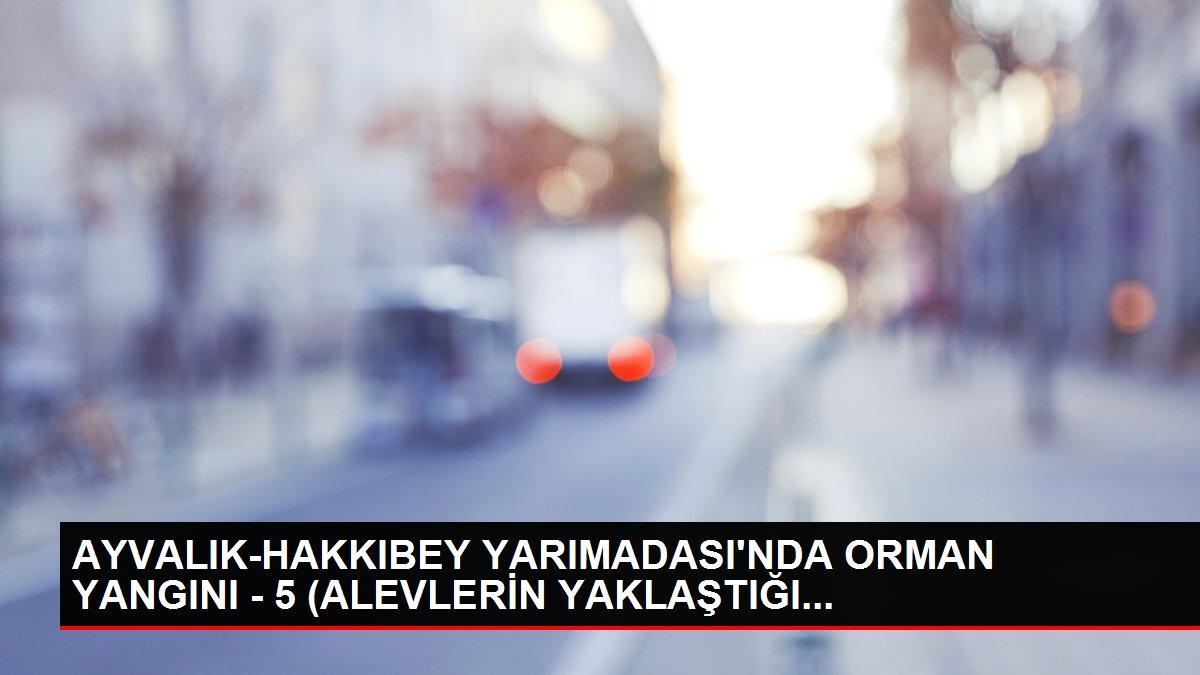 AYVALIK-HAKKIBEY YARIMADASI'NDA ORMAN YANGINI - 5 (ALEVLERİN YAKLAŞTIĞI...