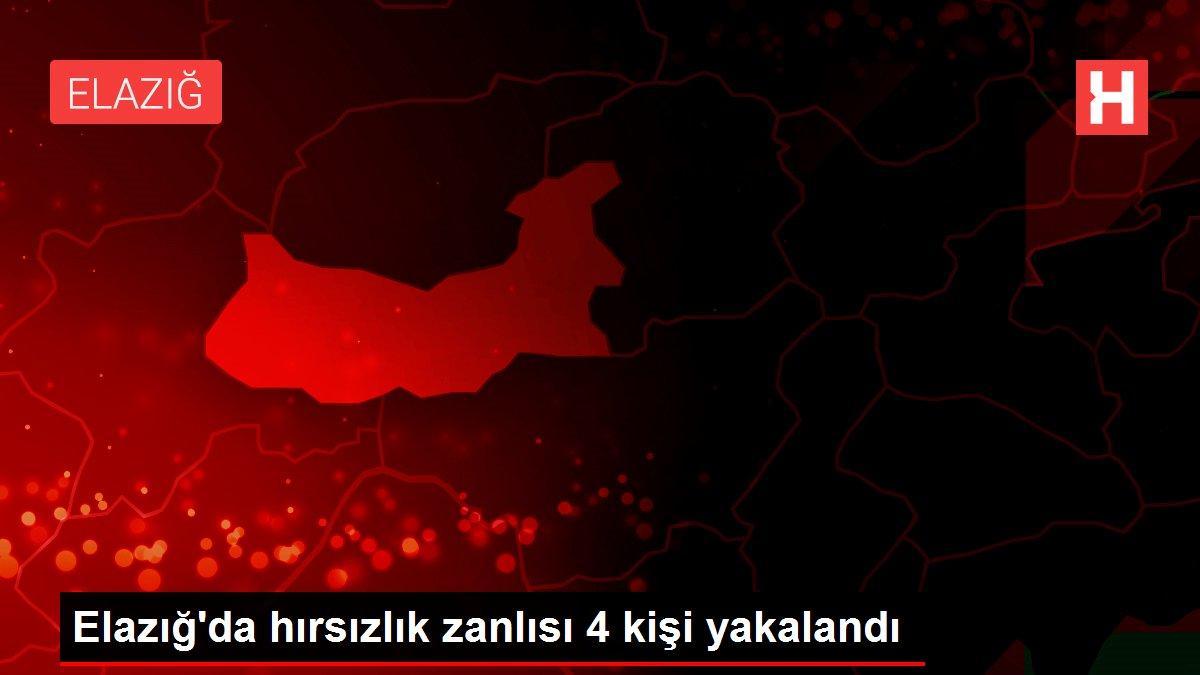 Elazığ'da hırsızlık zanlısı 4 kişi yakalandı