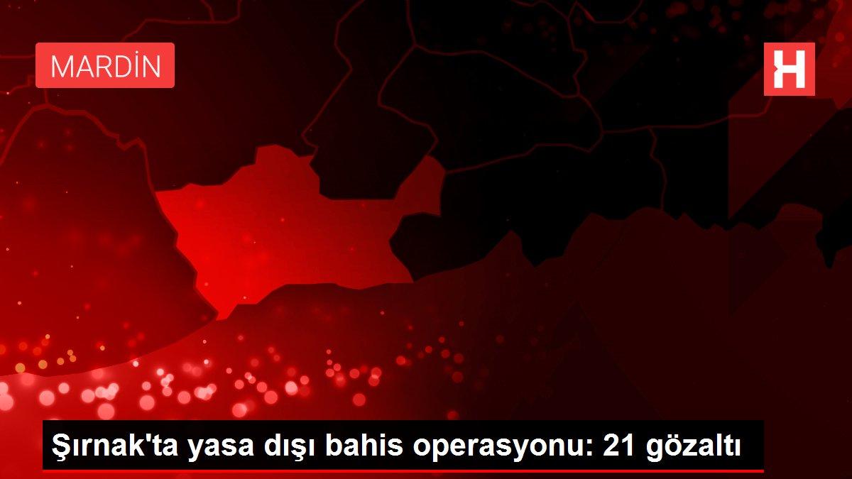 Şırnak'ta yasa dışı bahis operasyonu: 21 gözaltı