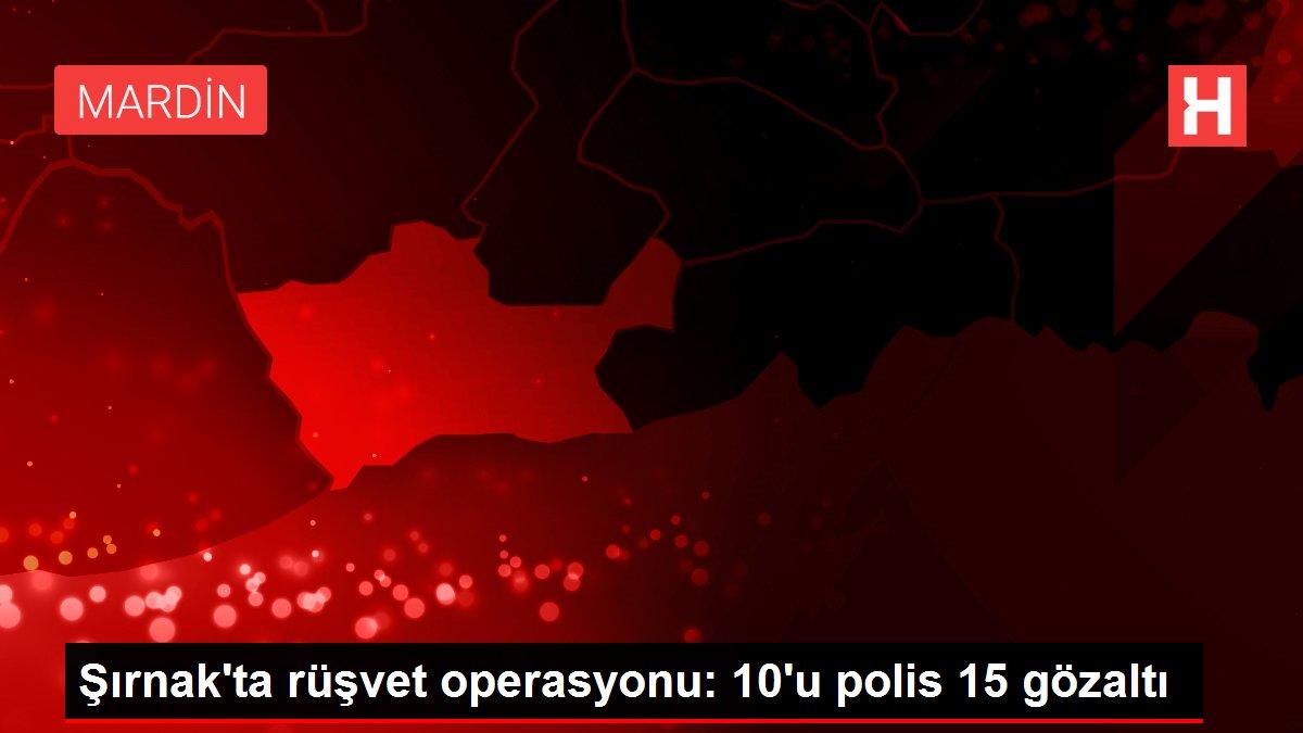 Şırnak'ta rüşvet operasyonu: 10'u polis 15 gözaltı