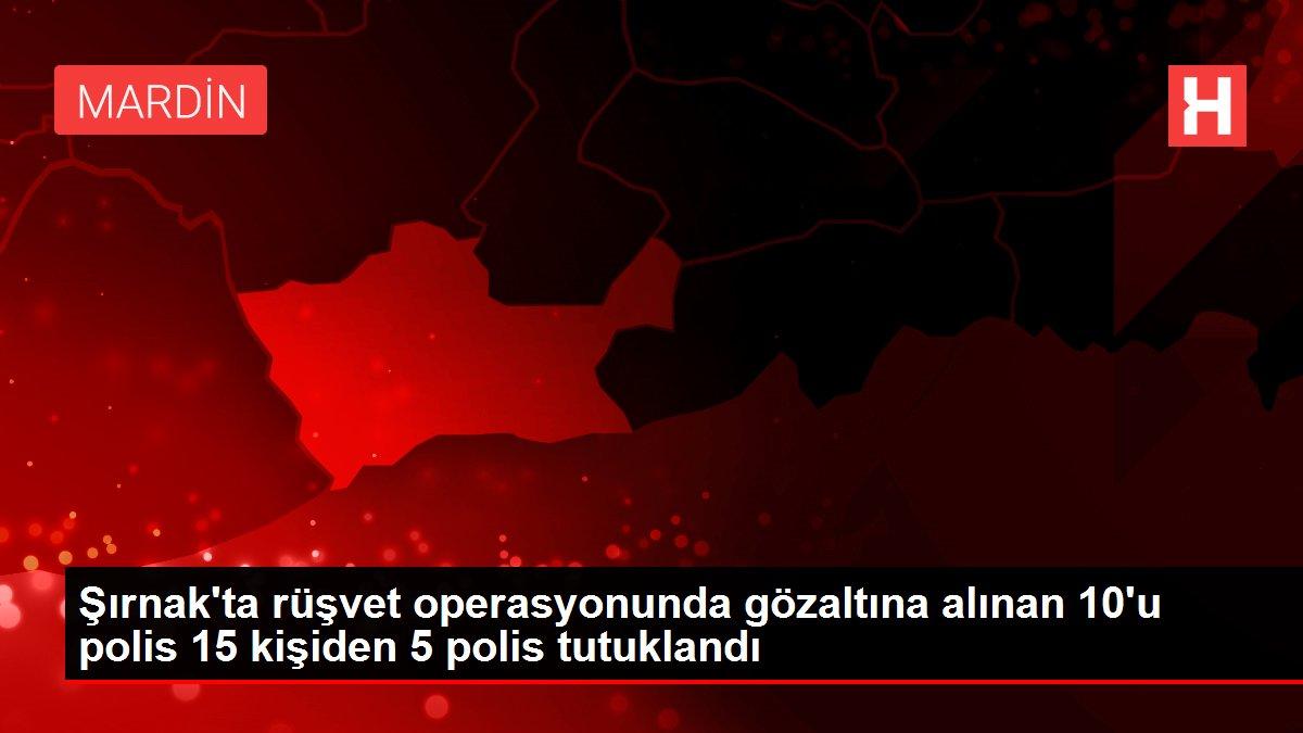 Şırnak'ta rüşvet operasyonunda gözaltına alınan 10'u polis 15 kişiden 5 polis tutuklandı