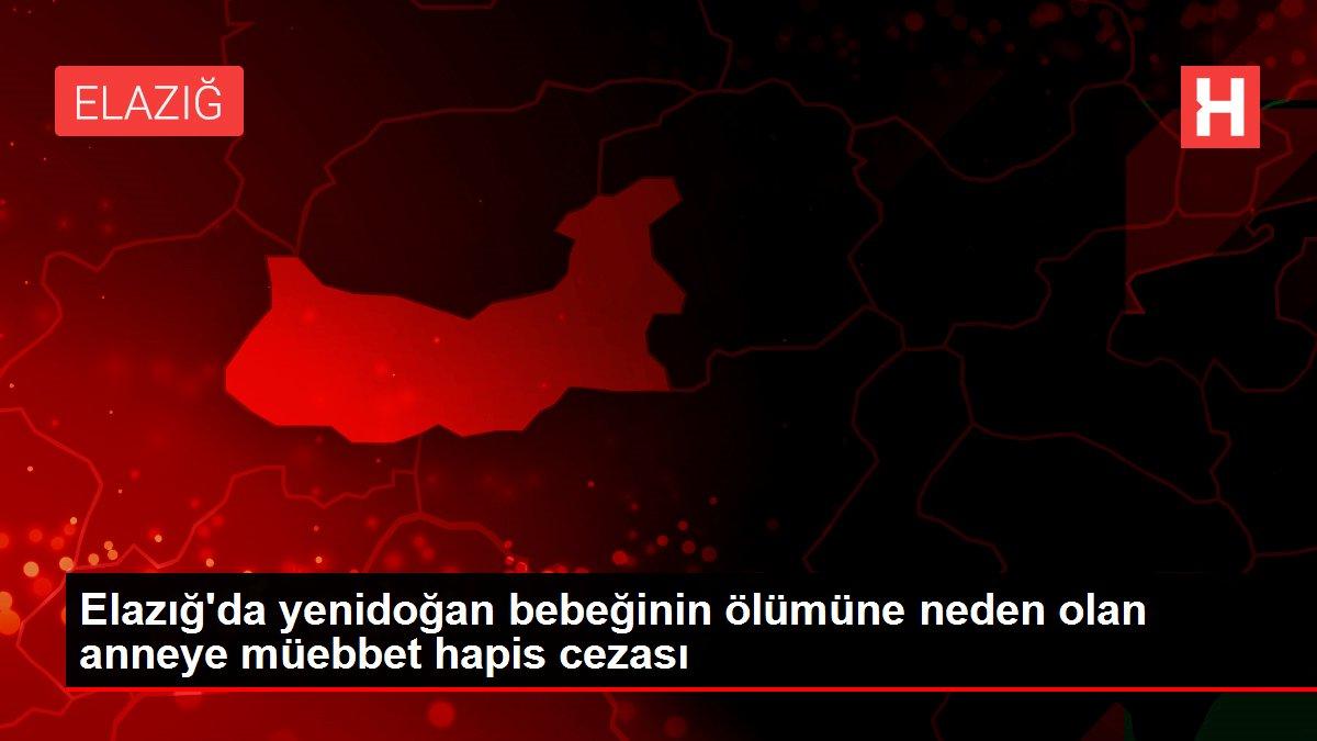 Son dakika haberi... Elazığ'da yenidoğan bebeğinin ölümüne neden olan anneye müebbet hapis cezası