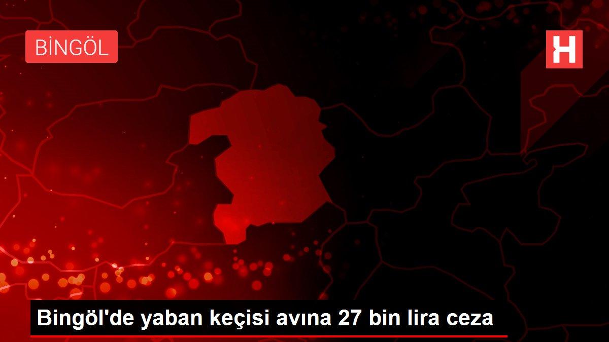 Bingöl'de yaban keçisi avına 27 bin lira ceza