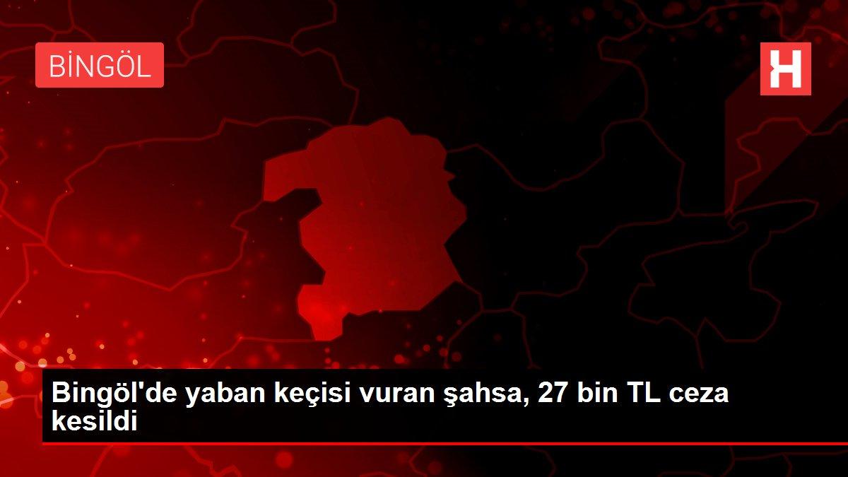 Bingöl'de yaban keçisi vuran şahsa, 27 bin TL ceza kesildi