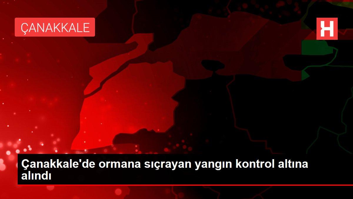 Son dakika haber... Çanakkale'de ormana sıçrayan yangın kontrol altına alındı