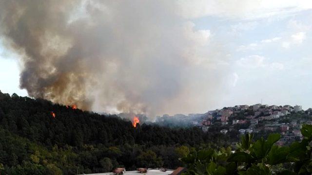 İstanbul'da yerleşim yerlerine yakın iki noktada orman yangını