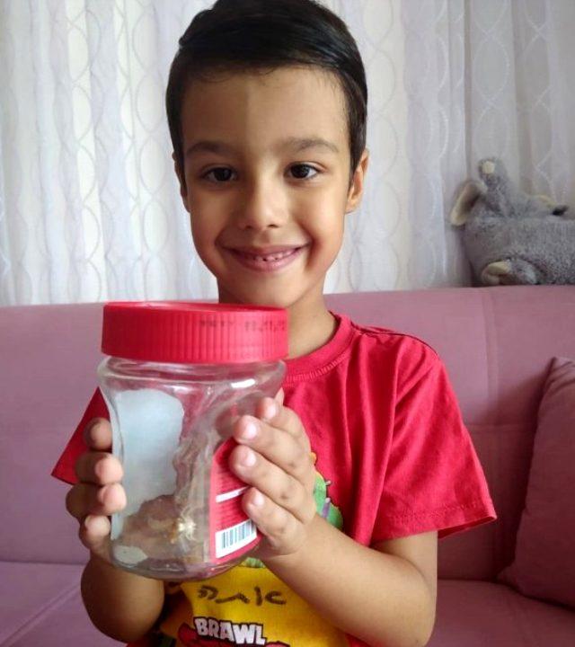 Milas'ta 'İnsan yüzlü örümcek' bulundu