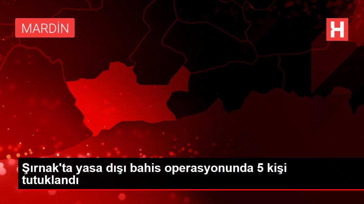 Son dakika haber: Şırnak'ta yasa dışı bahis operasyonunda 5 kişi tutuklandı