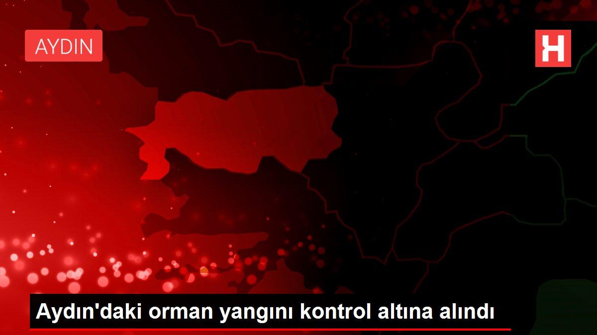 Son dakika haberleri | Aydın'daki orman yangını kontrol altına alındı