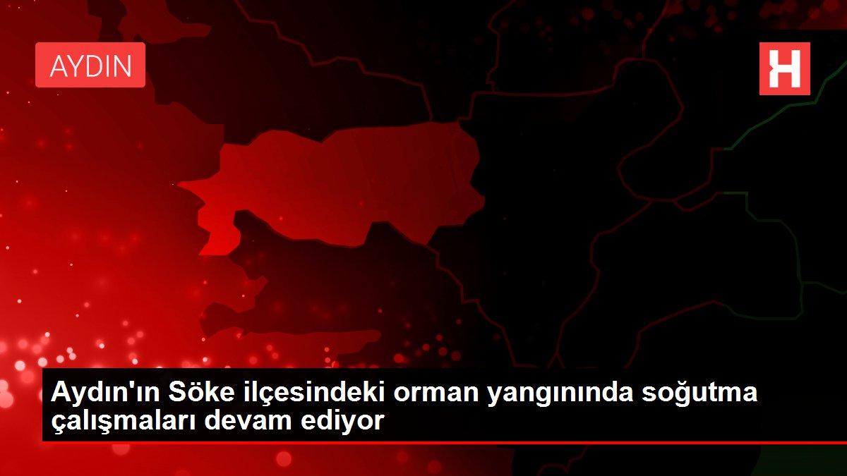 Aydın'ın Söke ilçesindeki orman yangınında soğutma çalışmaları devam ediyor